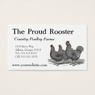 Plymouth Rock-Hühner, Hahn Visitenkarte