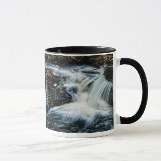 Pocono Kaskaden-Herbst-Wasserfall-Tasse Tasse