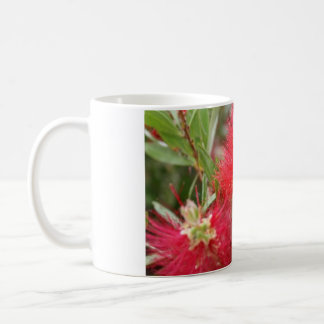 Pohutakawa Baum Kaffeetasse