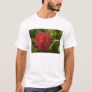 Pohutukawa Blume, Dunedin T-Shirt