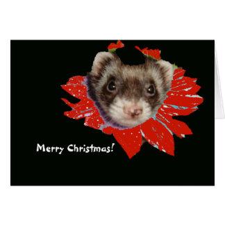 Poinsettia-Frettchen-Weihnachtskarte Karte