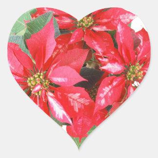 Poinsettia-Weihnachtsstern transparentes png Herz-Aufkleber