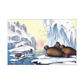 Polare Bären, Walroß und Siegel Leinwanddruck