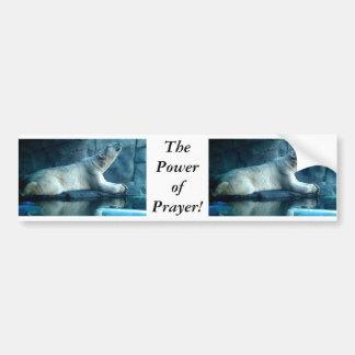 Polarer Bär im Gebets-Autoaufkleber Autoaufkleber