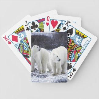 Polarer Bärn-Liebe Bicycle Spielkarten