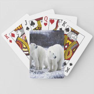 Polarer Bärn-Liebe Spielkarten