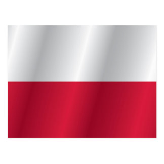 Polen-Flagge Postkarte