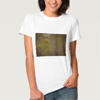 Pollen Hemden