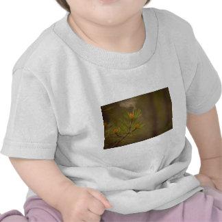 Pollen Tshirt