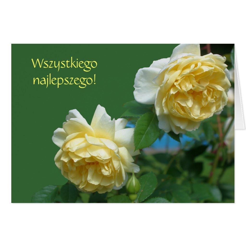 Zum Geburtstag Polnisch Geburtstagsgluckwunsche Karte