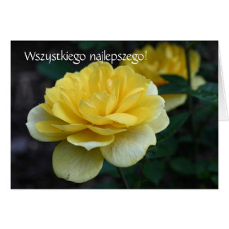 Polnische Geburtstags-Karte Sto Lat-Gelb-Rose Grußkarte