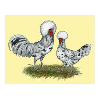 Polnische Spritzen-Hühner Postkarte