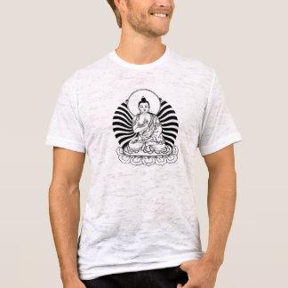 polo Buda