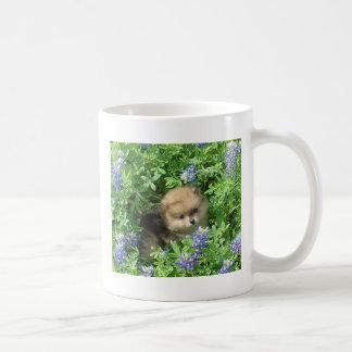 Pom Welpe in den blauen Mützen Kaffeetasse