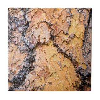 Ponderosa Kiefernbarke, Washington Keramikfliese