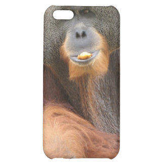 Pongo-Affe iPhone Fall iPhone 5C Cover