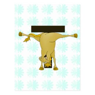 Pony-Pferd des Monogramm-T personalisiert Postkarten