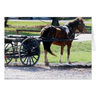Pony-Wagen Karte