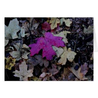 Pop des rosa Laubs Karte
