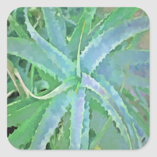Pop-Kunst-graue grüne Aloe Quadratischer Aufkleber