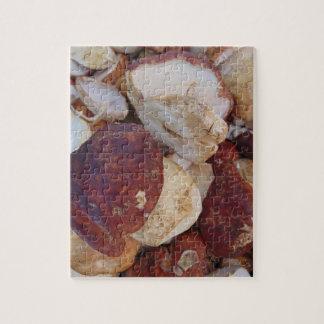 Porcini Pilze Puzzle