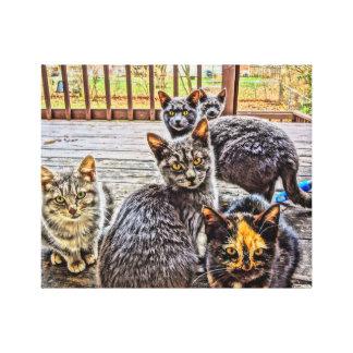 Portalkatzen auf Leinwand