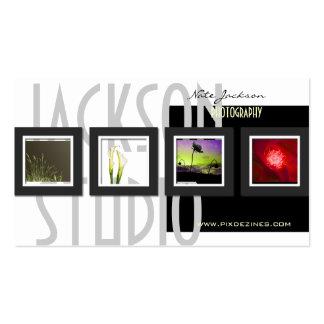 Portfoliogeschäftskarten-Fotoschablone Visitenkarten