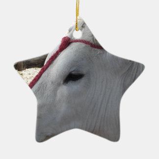 Porträt des Chianina, italienische Zucht des Viehs Keramik Ornament