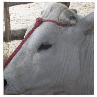 Porträt des Chianina, italienische Zucht des Viehs Serviette
