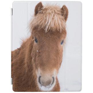 Porträt des isländischen Pferds iPad Hülle