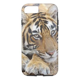 Porträt des königlichen bengalischen Tigers, iPhone 8/7 Hülle