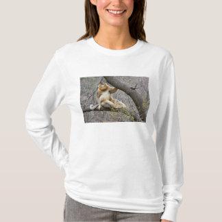 Porträt des männlichen goldenen Affen im Baum T-Shirt
