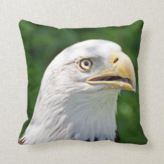 Porträt eines Weißkopfseeadlers Kissen
