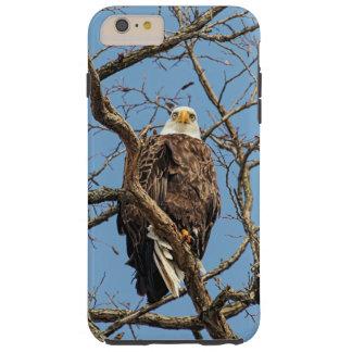 Porträt eines Weißkopfseeadlers Tough iPhone 6 Plus Hülle