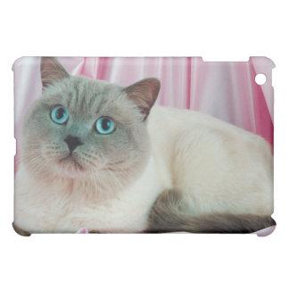 Porträt von Katze 4 iPad Mini Cover