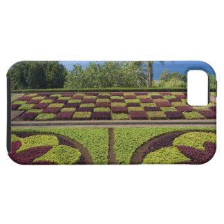 Portugal, Madeira-Insel, Funchal. Botanisch Etui Fürs iPhone 5