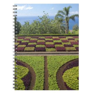 Portugal, Madeira-Insel, Funchal. Botanisch Notizblock