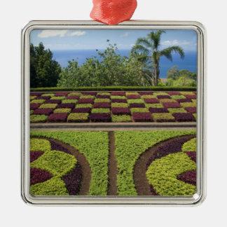 Portugal, Madeira-Insel, Funchal. Botanisch Quadratisches Silberfarbenes Ornament