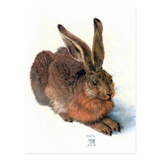 Postkarte:  Das Kaninchen Postkarte