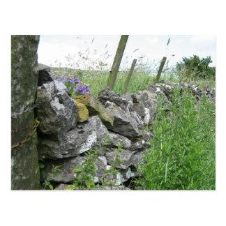 Postkarte: Derbyshiresteinwand Postkarte
