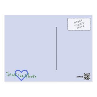 Postkarte des Winter-Fluss-Silver2