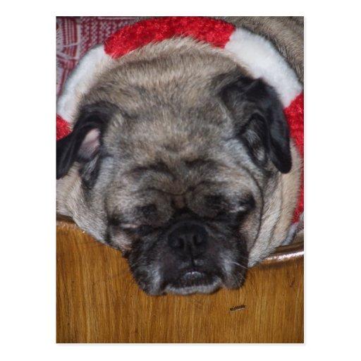 Postkarte eines Mops-Hundes Weihnachts