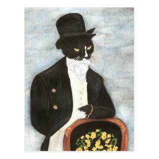 Postkarte Herrn Darcy Cat