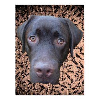 Postkarte Labrador Jimmy