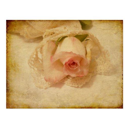 Postkarte mit Vintager Rose
