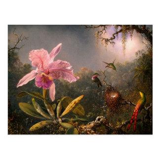 Postkarte: Orchidee und Kolibris Postkarte