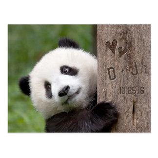 Postkarte Panda-CUBs Save the Date