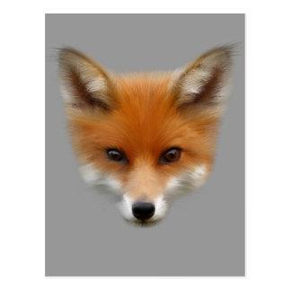 Postkarte roten Fox CUB