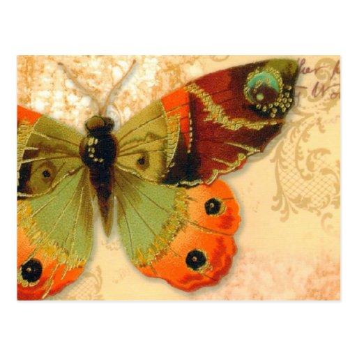 """Postkarte   """"Schmetterling """""""
