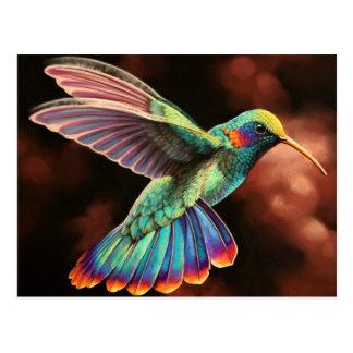 Postkarten des Kolibri-2